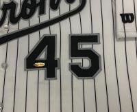 Michael Jordan Signed 44x47 Custom Framed LE Barons Jersey (UDA COA) at PristineAuction.com