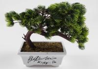 "Ralph Macchio Signed ""The Karate Kid"" Bonsai Tree Replica Inscribed ""Miyagi - Do"" (JSA COA) at PristineAuction.com"