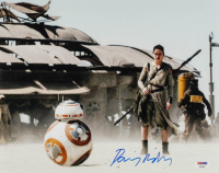 """Daisy Ridley Signed """"Star Wars: The Force Awakens"""" 11x14 Photo (PSA COA) at PristineAuction.com"""
