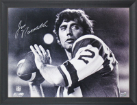 Joe Namath Signed Jets 33x44 Custom Framed Photo Display (Fanatics Hologram) (See Description) at PristineAuction.com