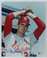 Steve Carlton Signed Cardinals 8x10 Photo (Beckett COA) (See Description) at PristineAuction.com