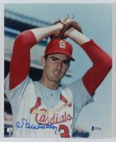 Steve Carlton Signed Cardinals 8x10 Photo (Beckett COA) (See Description) at PristineAuction.com