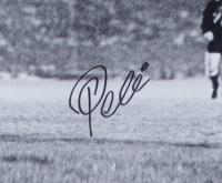 Pele Signed Team Brazil 16x20 Photo (JSA COA) at PristineAuction.com