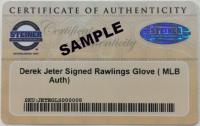 Tom Brady & Rob Gronkowski Signed Patriots 16x20 Custom Framed Photo Display with (2) Pins (Stiener COA & Tristar Hologram) at PristineAuction.com