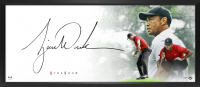 "Tiger Woods Signed ""The Show"" 18x44 Custom Framed Lithograph (UDA COA) at PristineAuction.com"