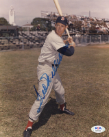 Ted Williams Signed Red Sox 8x10 Photo (PSA LOA) at PristineAuction.com