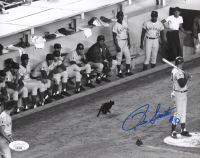 Ron Santo Signed Cubs 8x10 Photo (JSA Hologram) at PristineAuction.com