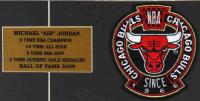 Michael Jordan Bulls 15x22 Custom Framed Photo Display with Vintage 1966 Team Patch at PristineAuction.com