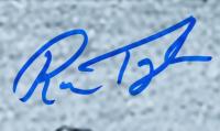 Ron Taylor Signed Cardinals 16x20 Photo (JSA COA) at PristineAuction.com