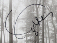 "Taylor Swift Signed ""Folklore"" 16x20 Custom Framed CD Booklet Display (JSA COA) at PristineAuction.com"