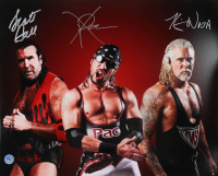 Kevin Nash, Scott Hall & X-Pac Signed WWE 16x20 Photo (Pro Player Hologram) at PristineAuction.com