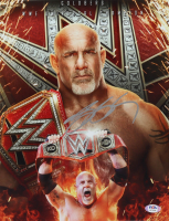 Bill Goldberg Signed WWE 11x14 Photo (PSA COA) at PristineAuction.com