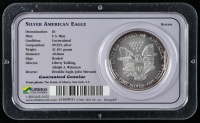 1999 American Silver Eagle $1 One Dollar Coin at PristineAuction.com