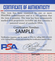 Jack Nicklaus & Arnold Palmer Signed 18x30 Custom Framed Photo Display (PSA COA) at PristineAuction.com