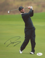 Paul Casey Signed 8x10 Photo (JSA COA) at PristineAuction.com