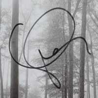 Taylor Swift Signed 10x17 Custom Framed CD Display (JSA COA) (See Description) at PristineAuction.com