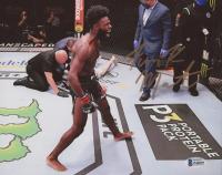 "Aljamain ""Funk Master"" Sterling Signed UFC 8x10 Photo (Beckett COA) at PristineAuction.com"