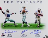 Emmitt Smith, Troy Aikman & Michael Irvin Signed Cowboys 16x20 Photo (Beckett COA & Prova COA) at PristineAuction.com