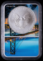 2012-(S) American Silver Eagle $1 One Dollar Coin - San Francisco Core (NGC MS69) at PristineAuction.com