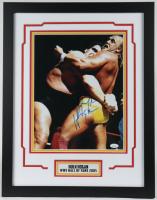 Hulk Hogan Signed 18x23 Custom Framed Photo Display (JSA COA) at PristineAuction.com