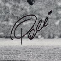 Pele Signed Brazil 23.5x27.5 Custom Framed Photo Display (PSA Hologram) at PristineAuction.com