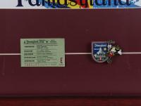 "Disneyland ""Matterhorn"" 15x26 Custom Framed Print with Vintage 'E' Ticket & Vintage Matterhorn Pin at PristineAuction.com"