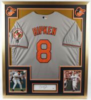 Cal Ripken Jr. Signed 32x36 Custom Framed Cut Display (PSA COA) at PristineAuction.com
