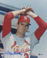 Steve Carlton Signed Cardinals 8x10 Photo (Beckett COA) at PristineAuction.com