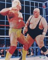 Hulk Hogan Signed WWE 16x20 Photo (Schwartz COA, Stiener Hologram, & SportsMemorabilia Hologram) at PristineAuction.com