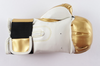 Julio Cesar Chavez Signed Everlast Boxing Glove with Display Case (PSA COA) (See Description) at PristineAuction.com