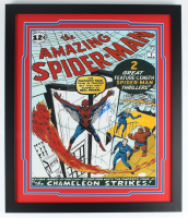 "Stan Lee Signed ""The Amazing Spider-Man"" 22x26 Custom Framed Photo Display (JSA Hologram) (See Description) at PristineAuction.com"