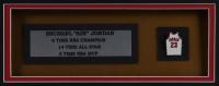 Michael Jordan Bulls 32x36 Custom Framed Jersey Display with Bulls #23 Jersey Pin (See Description) at PristineAuction.com