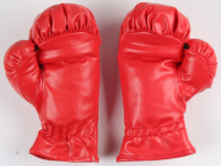Julio Cesar Chavez Signed Pair of Everlast Boxing Gloves (PSA COA) at PristineAuction.com