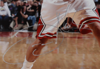 Joakim Noah Signed Bulls 16x20 Photo (JSA COA) at PristineAuction.com