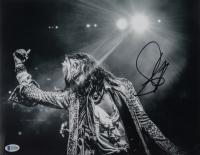 Steven Tyler Signed 11x14 Photo (Beckett COA) at PristineAuction.com