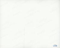 "Tommy Chong & Cheech Marin Signed ""Cheech & Chong's Next Movie"" 8x10 Photo (AutographCOA COA) at PristineAuction.com"