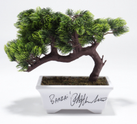 "Ralph Macchio Signed ""The Karate Kid"" Bonsai Tree Replica Inscribed ""Banzai!"" (JSA COA) (See Description) at PristineAuction.com"