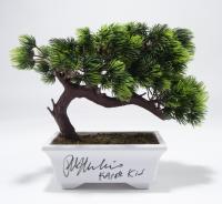 """Ralph Macchio Signed """"The Karate Kid"""" Bonsai Tree Replica Inscribed """"Banzai!"""" (JSA COA) (See Description) at PristineAuction.com"""