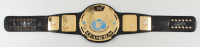 WWF Wrestling Champs Belt Signed by (30) with Hulk Hogan, Triple H, Bruno Sammartino, Bret Hart, Ric Flair, Ted DiBiase (Beckett LOA) (See Description) at PristineAuction.com