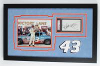 Richard Petty Signed 16x26 Custom Framed Cut Display (PSA Encapsulated & JSA SOA) at PristineAuction.com