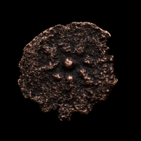 """""""Widow's Mite"""" Rare Biblical 2000 Year Old Coin From The Holy Land at PristineAuction.com"""