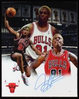 Dennis Rodman Signed Bulls 16x20 Photo (JSA Hologram) at PristineAuction.com