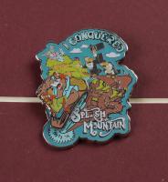 "Disney's ""Splash Mountain"" 15x26 Framed Print Display with Metal Ride Lapel Pin & Vintage Disney World Ticket Book at PristineAuction.com"