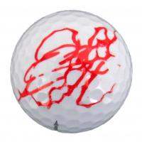 Hideki Matsuyama Signed Masters Logo Titleist Golf Ball (JSA COA) at PristineAuction.com
