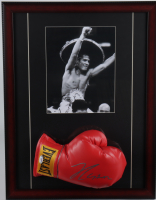 Julio Cesar Chavez Signed 17x22 Custom Framed Boxing Glove Display (PSA COA) at PristineAuction.com