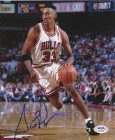 Scottie Pippen Signed Bulls 7.25x9 Photo (PSA Hologram) at PristineAuction.com