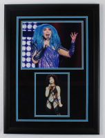 Cher Signed 21x28.5 Custom Framed Photo Display (REAL LOA) (See Description) at PristineAuction.com