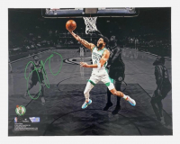 Jayson Tatum Signed Celtics 11x14 Photo (Fanatics Hologram) at PristineAuction.com