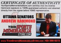 "Andrew Hammond Signed Game-Issued Warrior Goalie Hockey Stick Inscribed ""The Hamburglar"" (Hammond COA) (See Description) at PristineAuction.com"