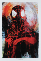 """Jason Oakes - """"Miles Morales"""" Signed Marvel Spider-Verse Collection 13"""" x 19"""" Lithograph (PA COA) at PristineAuction.com"""